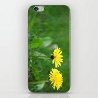 Dandelions iPhone & iPod Skin