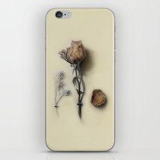 Dried Rose iPhone & iPod Skin