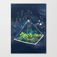 The Greenhouse At Night Canvas Print