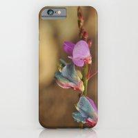dry away iPhone 6 Slim Case