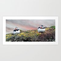 Two Puffins Art Print