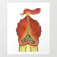 Nepenthes Carnivorous Pl… Art Print