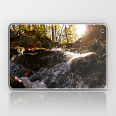 'Autumn Stream' Laptop & iPad Skin