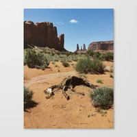 Monument Valley Horse Carcass Canvas Print