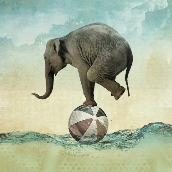 Elephant at Sea Art Print