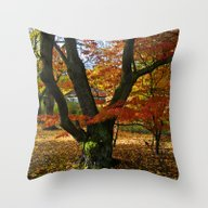 Red Autumnal Leaves Throw Pillow