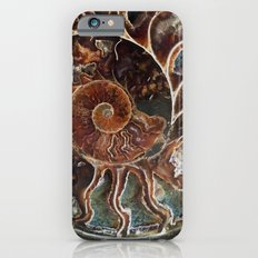 Fossilized Shell iPhone 6 Slim Case