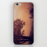 Mystic iPhone & iPod Skin