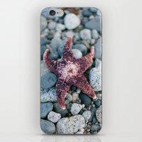 Sea Star iPhone & iPod Skin