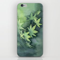 Japanese Maple Watercolor, Green Leaves, Tree Branch iPhone & iPod Skin