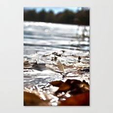 HDR vision of life Canvas Print