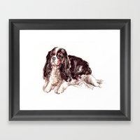 Sweet Spaniel Framed Art Print