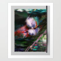 Water Lilies in Red and Purple Art Print