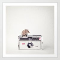The Hedgehog And The Ins… Art Print