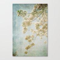 Blessings - Cherry Bloss… Canvas Print