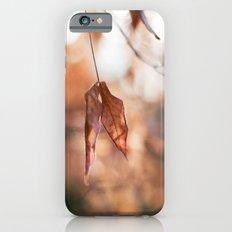 Late Autumn Light II iPhone 6 Slim Case
