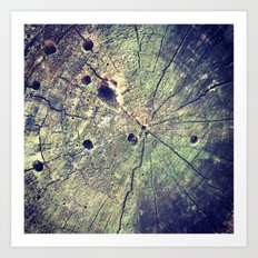 Nature Rings Art Print