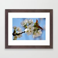 Now This Is Spring!  Framed Art Print