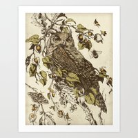 owl Art Prints featuring Great Horned Owl by Teagan White