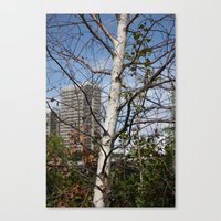 City In The Branches Canvas Print
