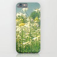 iPhone & iPod Case featuring Field of Daisies by Cassia Beck