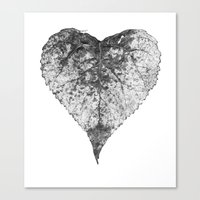 Heart B&w Canvas Print