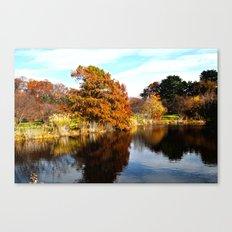 Arnold Arboretum Canvas Print