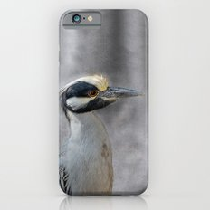 Yellow-crowned Night Heron iPhone 6s Slim Case