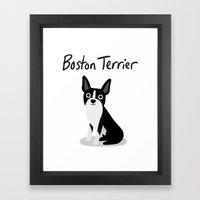 Boston Terrier - Cute Do… Framed Art Print