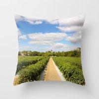 Tomato Fields  Throw Pillow