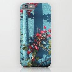 Echo Park iPhone 6 Slim Case
