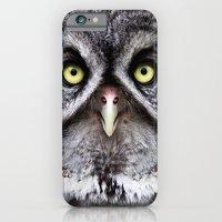 Great Gray Owl iPhone 6 Slim Case