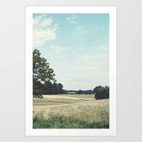 Country Land  Art Print
