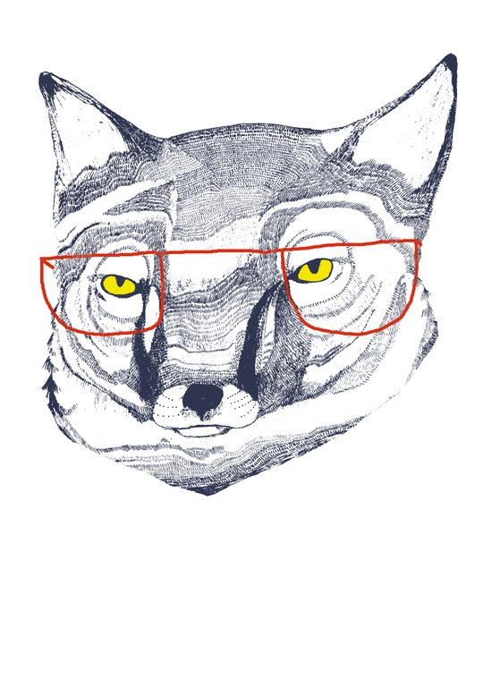 Mr Fox Canvas Print