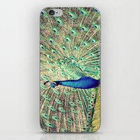 Pretty as a Peacock iPhone & iPod Skin