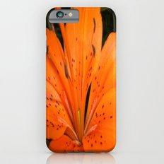 ORANGE BLOOM iPhone 6 Slim Case