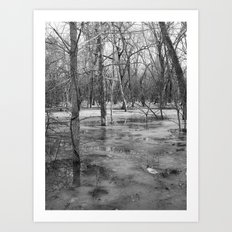 Ice swamp Art Print