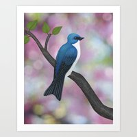 tree swallow and pink bokeh Art Print