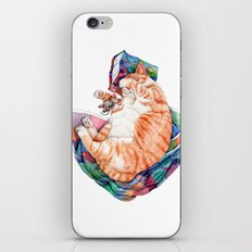 Zoi's Winter Nap iPhone & iPod Skin