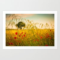 Poppies with tree in the distance Art Print