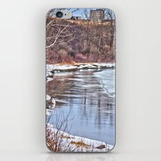 Snowy Riverbank iPhone & iPod Skin