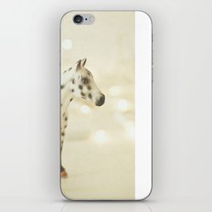Horse in Winter iPhone & iPod Skin