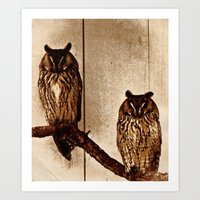 Couldn't Give Two Hoots! Art Print