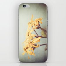 Who are you iPhone & iPod Skin