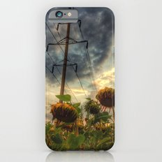 field of faded sunflowers  Slim Case iPhone 6s