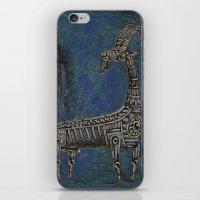 Argali iPhone & iPod Skin