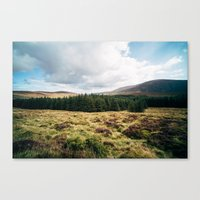Wicklow Pass Canvas Print