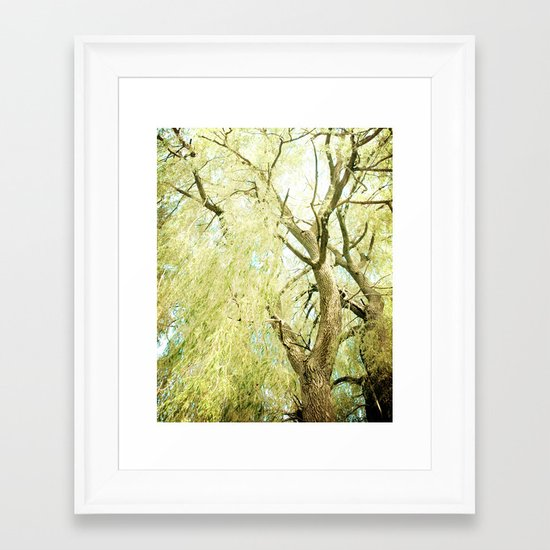 Willow Tree Framed Art Print