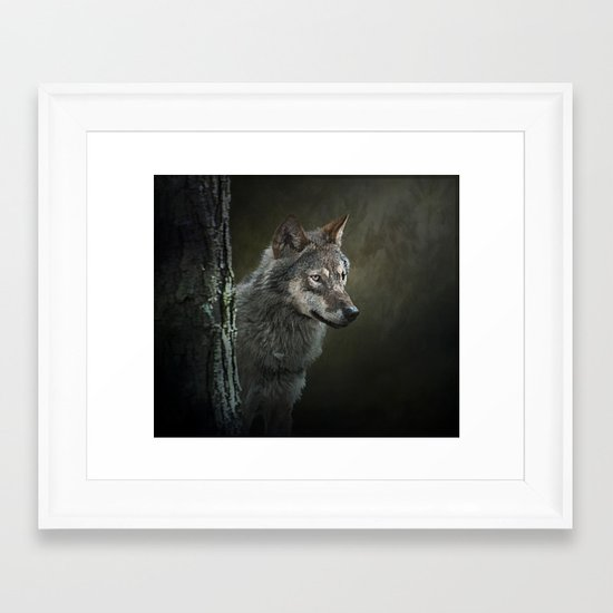 European Wolf Framed Art Print