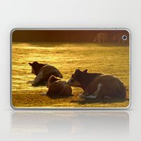 Sitting Cows Laptop & iPad Skin